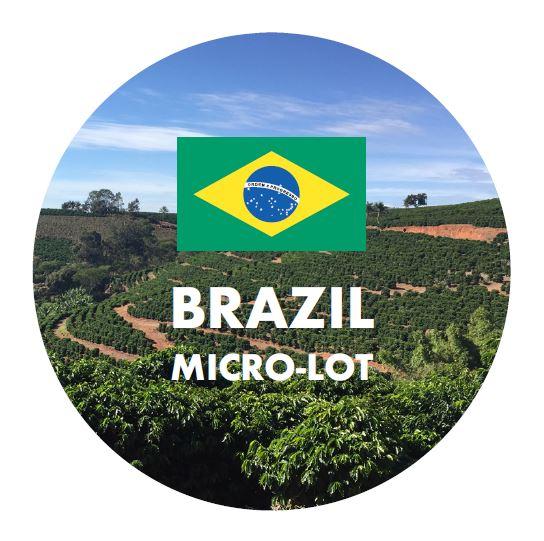 Brazil micro-lot coffee